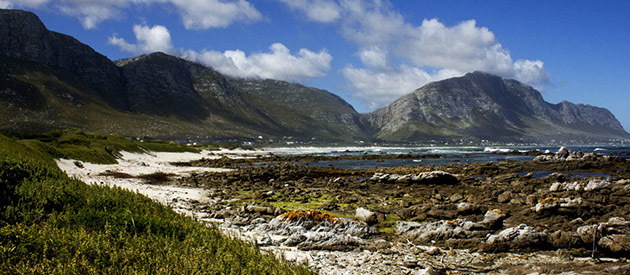 The Town of Betty's Bay