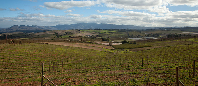 The Elgin Valley Region