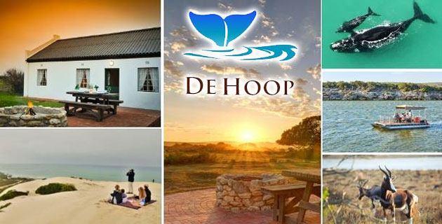 de hoop collection, de hoop nature reserve, whale reserve, wedding venue, private reserve, self catering, accommodation, conference, diving, western capeDE HOOP COLLECTION, overberg, www.south-africa-info.co.za