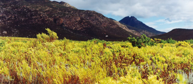 De Hoop Nature Reserve, in the Western Cape, South Africa, Overberg Activities
