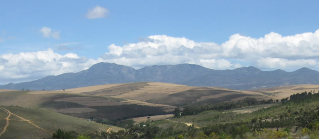 Botrivier, overberg, western cape, south africa