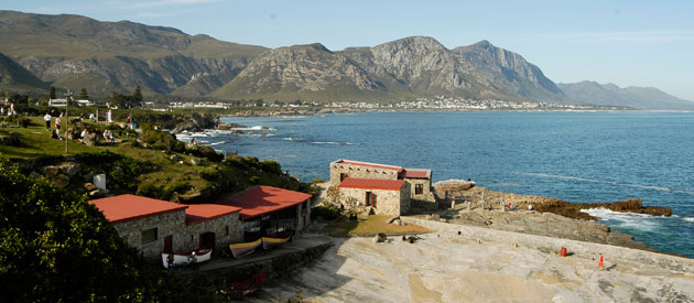 Hermanus, in the Western Cape in South Africa